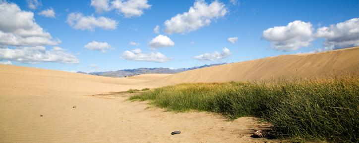 Novemberlovsresan går till Gran Canaria